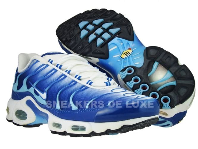604133 303 Nike Air Max Plus TN 1 Black BruseMetallic