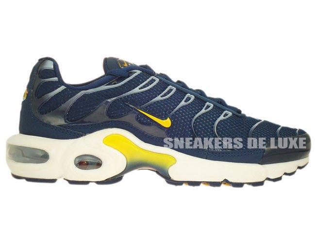 2da073d7eb Nike Air Max Plus TN 1 Brave Blue/ Laser Orange 655020-480 Nike \ kids